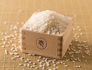 米・加工品のイメージ