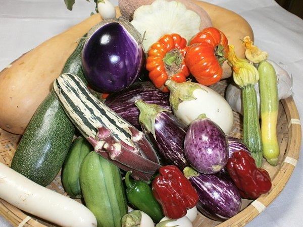 今週お届けのお野菜|吉野ヶ里あいちゃん農園の画像